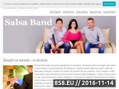 Miniaturka domeny salsaband.pl