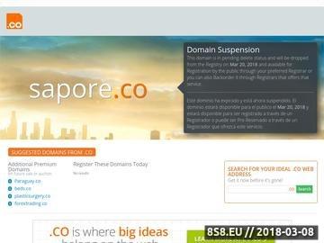 Zrzut strony Agencja marketingowa Sapore