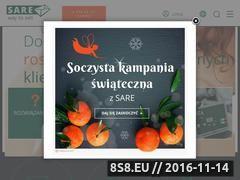 Miniaturka domeny sare.pl