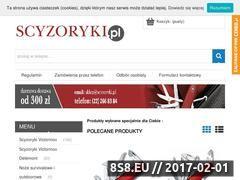 Miniaturka domeny www.scyzoryki.pl