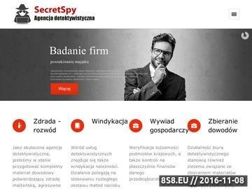Zrzut strony Biuro Detektywistyczne Poznań