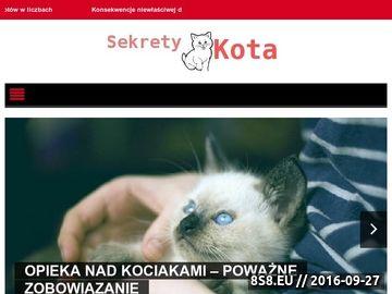 Zrzut strony Hodowla kotów syberyjskich klasycznych i neva masquerade