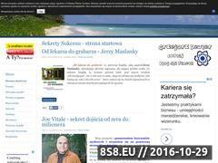 Miniaturka domeny sekretysukcesu.eu
