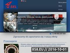 Miniaturka domeny sel-markiewicz.pl
