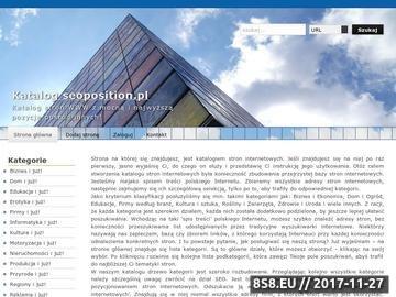 Zrzut strony Pozycjonowanie w Google stron WWW - Koszalin, Gdańsk i Szczecin - SEOPOSITION