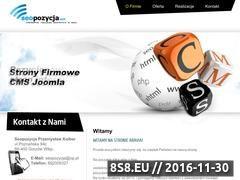 Miniaturka domeny seopozycja.net