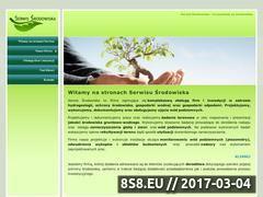 Miniaturka domeny www.serwis-srodowiska.pl