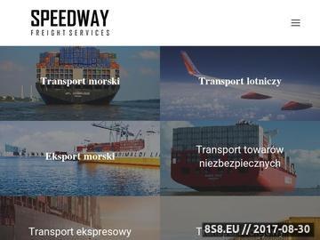Zrzut strony SFS Poland - firma spedycyjna
