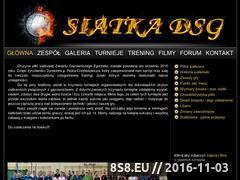 Miniaturka domeny siatkadsg.316.pl