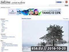 Miniaturka domeny www.sidzina.net.pl
