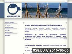 Miniaturka domeny www.sieci-korsze.pl