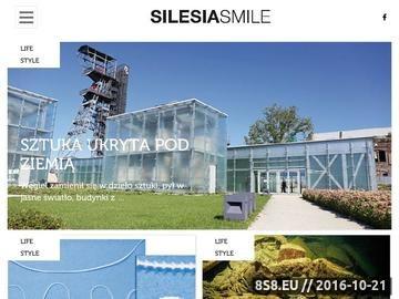 Zrzut strony Reklama firm na Śląsku