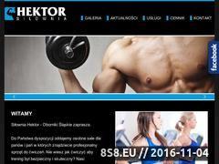 Miniaturka domeny www.silowniahektor.pl
