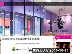 Miniaturka domeny silvercatstudio.pl