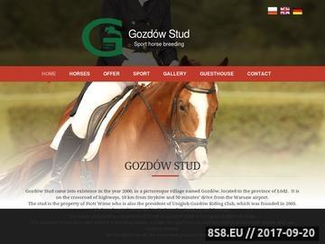 Zrzut strony Sprzedaż koni sportowych - Stadnina koni Gozdów