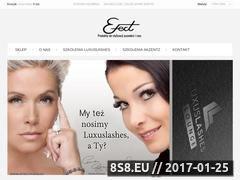 Miniaturka domeny www.sklep-efect.pl