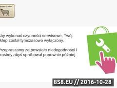 Miniaturka domeny sklep.wooltex-tedex.pl