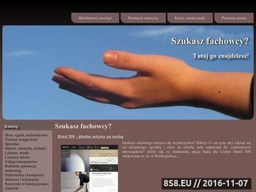 Zrzut strony SklepRS Konta Premium RapidShare, HotFile, FreakShare i inne