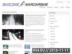 Miniaturka domeny www.skocznie.pl