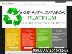 Miniaturka domeny www.skup-katalizatorow.pl