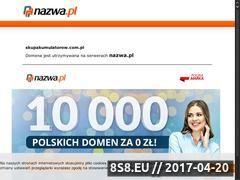 Miniaturka domeny www.skupakumulatorow.com.pl