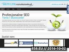 Miniaturka domeny www.skutecznerozwiazania.pl