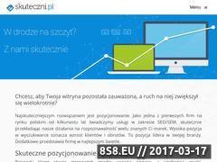 Miniaturka domeny skuteczni.pl