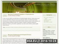 Miniaturka domeny slaskie.enui.pl