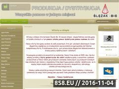 Miniaturka domeny www.slezakbis.pl