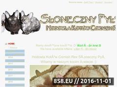 Miniaturka domeny slonecznypyl.pl