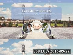 Miniaturka domeny slub-w-plenerze.com