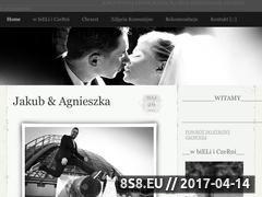 Miniaturka domeny slubnezdjecia.com.pl