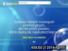 Miniaturka Social Ninja Marketing - prowadzenie fanpage to nasza pasja! (www.social-ninja.pl)