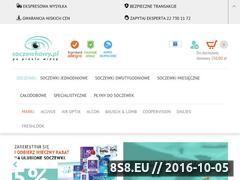 Miniaturka domeny soczewkowy.pl