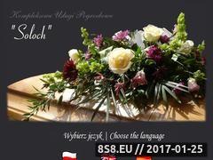 Miniaturka domeny www.soloch.eu