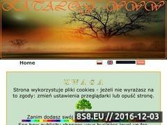 Thumbnail of Koty Norweskie Leśne Website