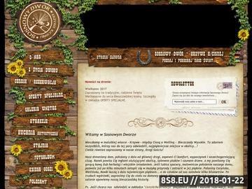 Zrzut strony Agroturystyka Bieszczady, noclegi, wypoczynek - Sosnowy Dwór Krzywe k/Cisnej