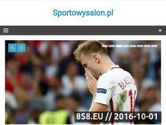 Miniaturka domeny sportowysalon.pl