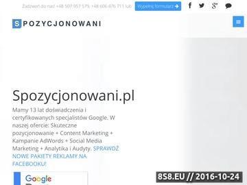 Zrzut strony Spozycjonowani.PL - pozycjonowanie stron internetowych w Google i optymalizacja