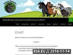 Miniaturka domeny stajniabatanka.pl