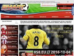 Miniaturka domeny www.strojesportowe.eu