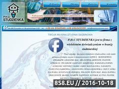 Miniaturka domeny www.studniewiercone.com