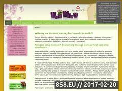 Miniaturka domeny www.superdoniczki.pl