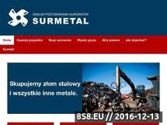 Miniaturka domeny surmetal.pl