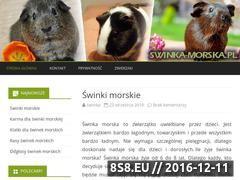 Miniaturka domeny www.swinka-morska.pl