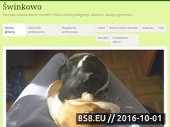 Miniaturka domeny swinkowo.wordpress.com