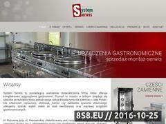 Miniaturka domeny www.systemserwis.pl