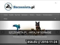 Miniaturka domeny www.szczenieta.pl