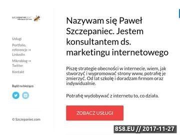 Zrzut strony Marketing w Internecie
