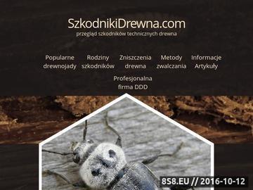 Zrzut strony Metody zwalczania szkodników drewna i przegląd szkodników